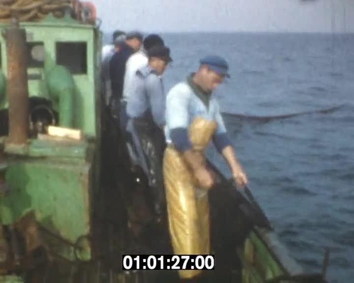 Pêche à la sardine | André Garnier