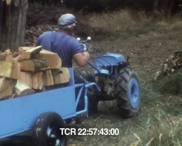 Arbre cassé, transport du bois