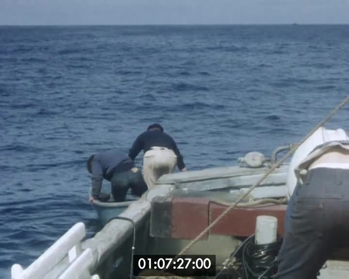 Croisière à Belle-Ile en mer